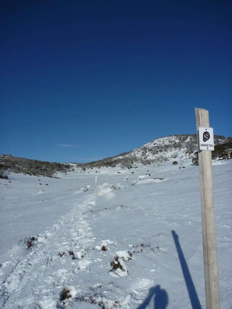 Rock Creek snowshoe pole line