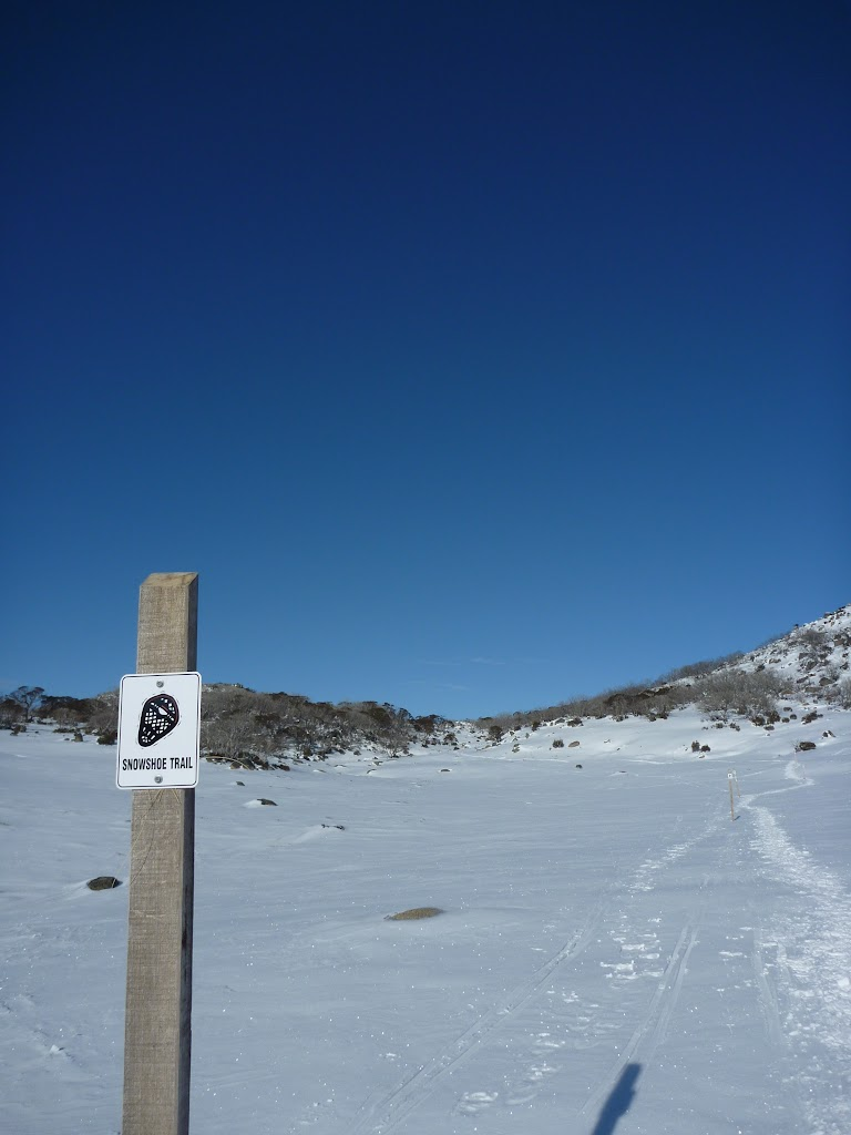 Walking up the open valley on the Rock Creek Snowshoe walk