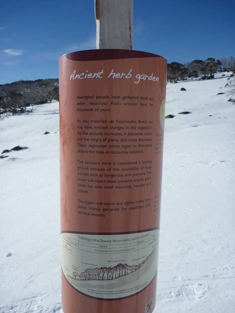 Ancient Herb Garden information sign