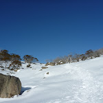 Scattering of granite boulders (299890)