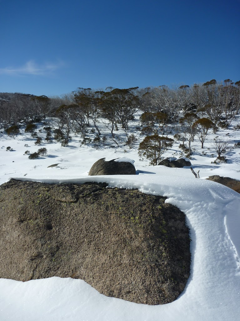 Blanket of snow on a boulder