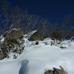 Snow on the hillside (299968)