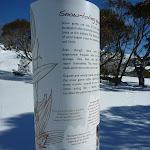 Snow loving gums sign (299998)