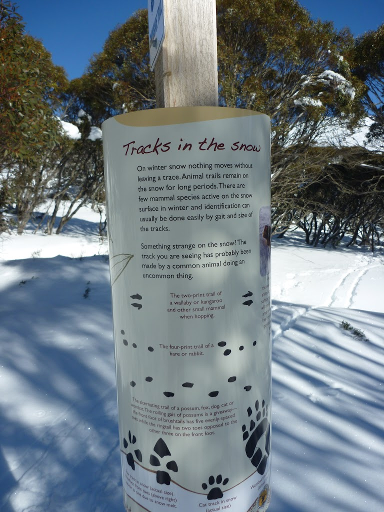 Tracks in the snow information sign