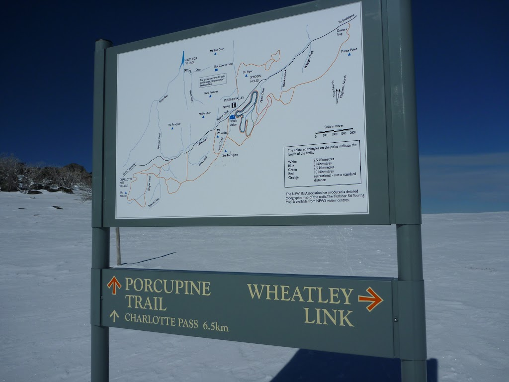 Int of Porcupine Trail and Wheatley Link Track
