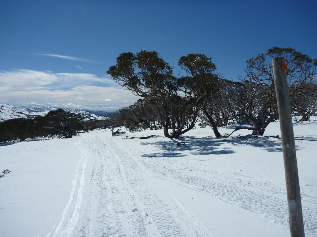 Walking down the Pocupine track in winter
