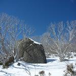 Granite Tor in the snow (300940)