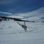Following snow-pole line (301315)