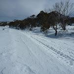 Crossing Link Road in winter (301372)