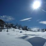 Following the Mt Piper pole line (301576)