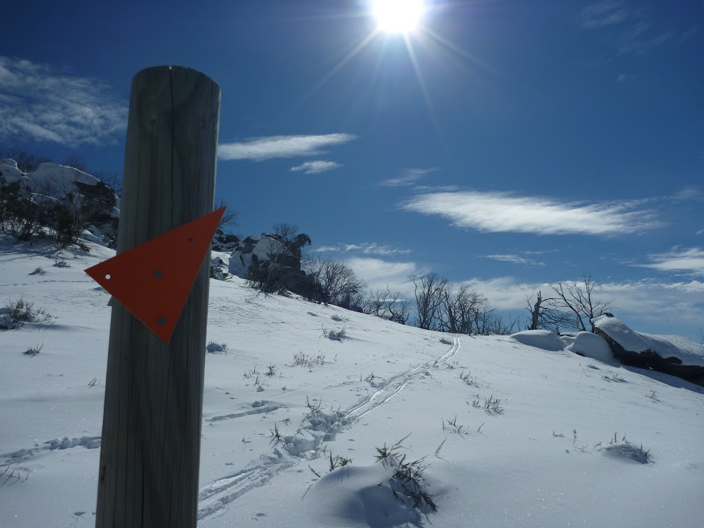 Snow pole in the sun