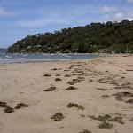 Mackerel Beach (30188)