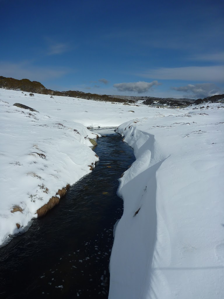 Perisher Creek (302224)