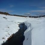 Perisher Creek (302224)