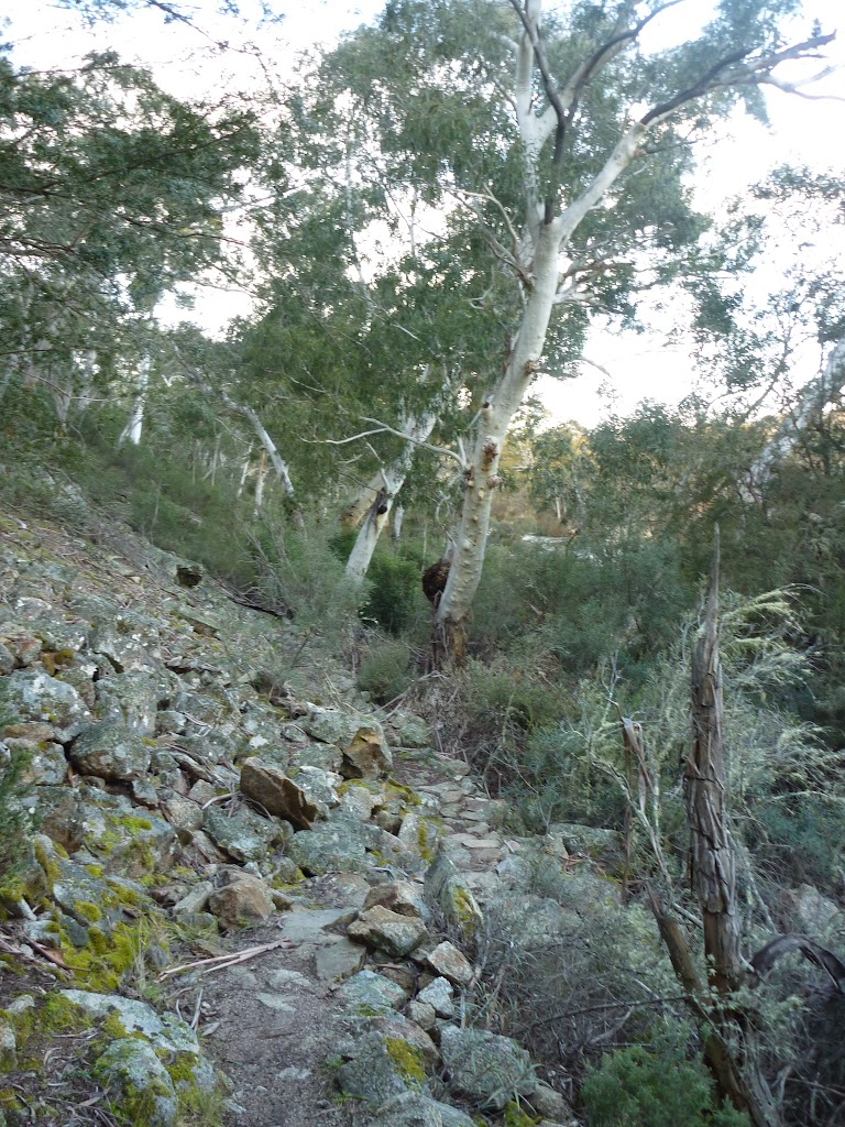 Rockfall on the Pallaibo Track near Thredbo River