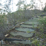 Steps on the Pallaibo Track