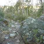 Granite Boulders on the Pallaibo Track
