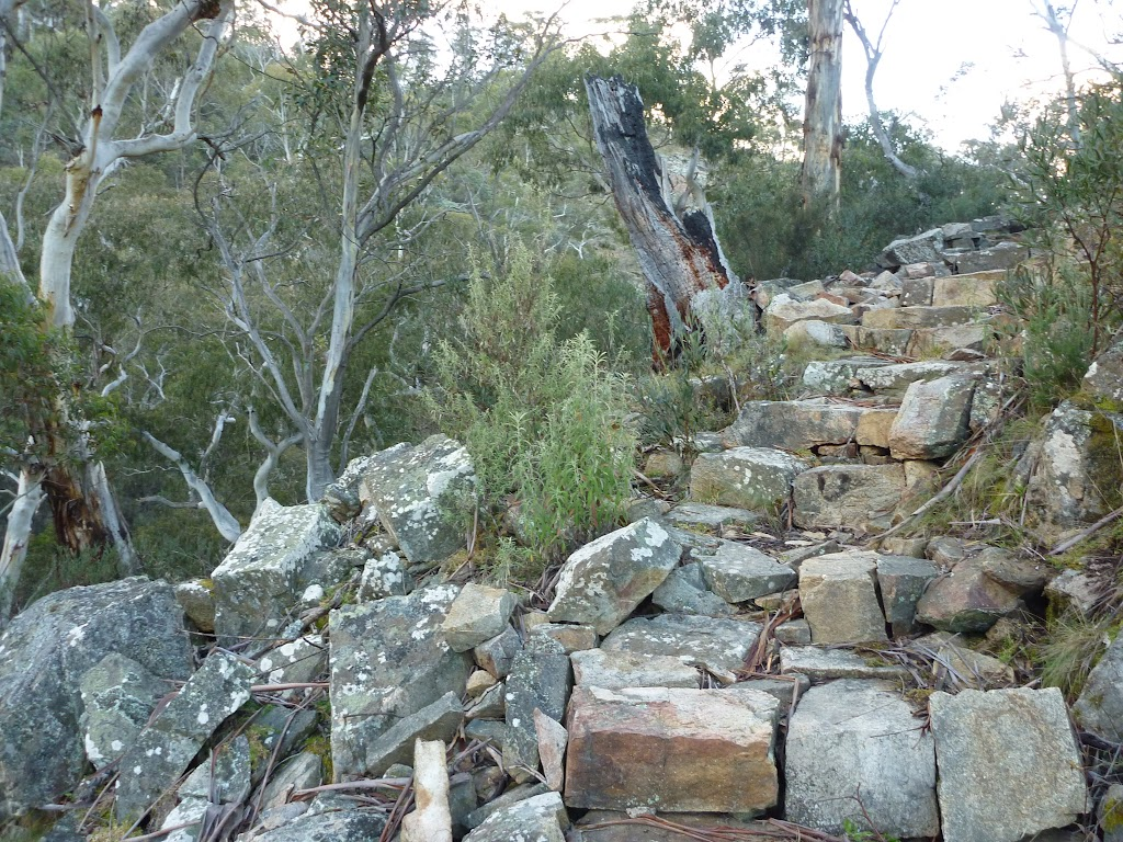 Stone Steps on Pallaibo Track