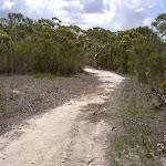 Challenger Management Trail (30356)