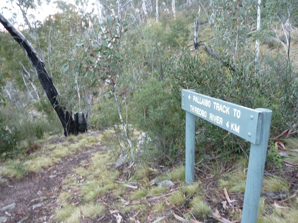 Pallaibo Track to Thredbo River 4 KM sign (303841)