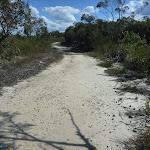 Elvina Track near West Head Rd. (304176)