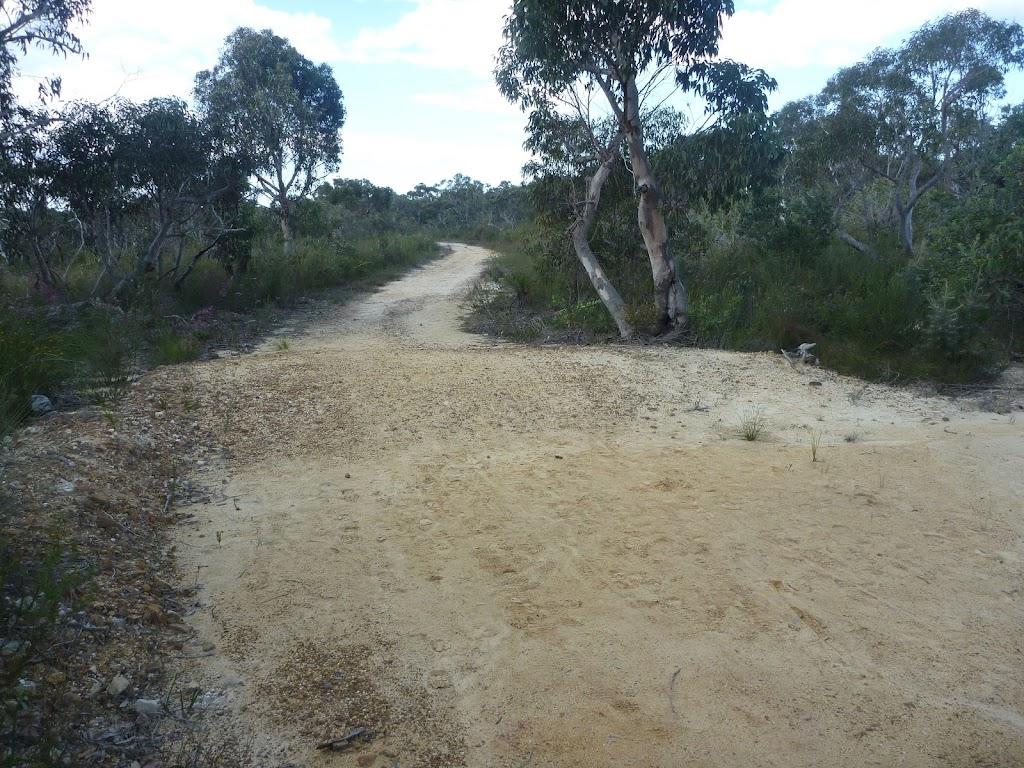 Elvina Track, near West Head Rd.