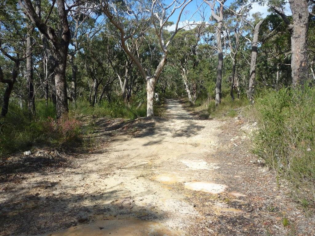 Elvina Track near West Head Rd.