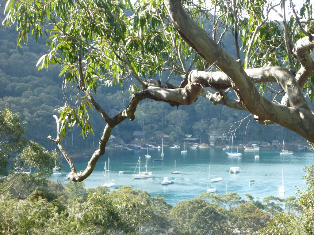 Views of Elvina Bay from Elvina Track (304482)