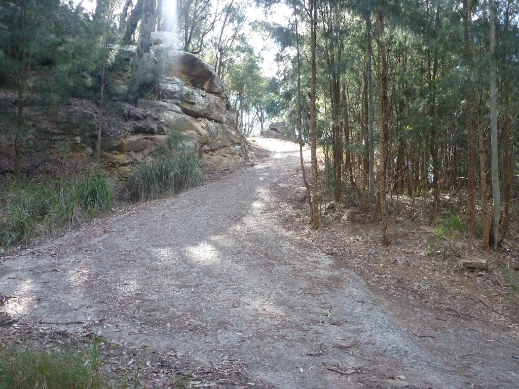 Elvina track, near West Head Rd