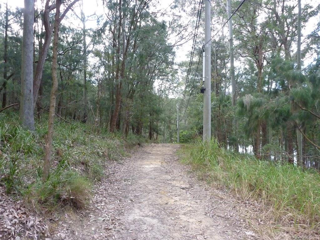 Elvina Track, near water