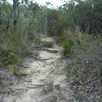 Fredericks Track (305529)