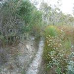 Fredericks Track