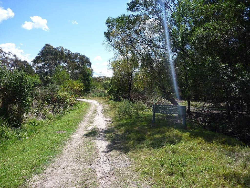 Trail, close to Nerang Rd, Terrey Hills