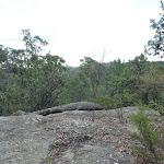 Nerang Viewpoint (306002)