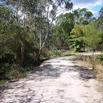 Perimeter Trail near Terrey Hills (306026)