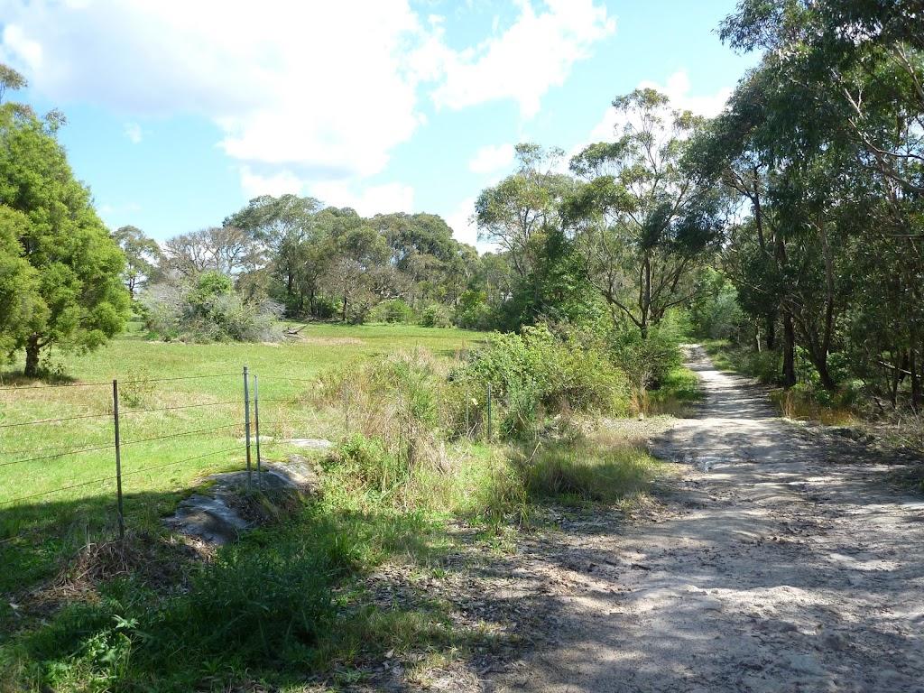 Perimeter Trail near Terrey Hills (306131)