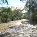 Perimeter Trail near Terrey Hills (306167)