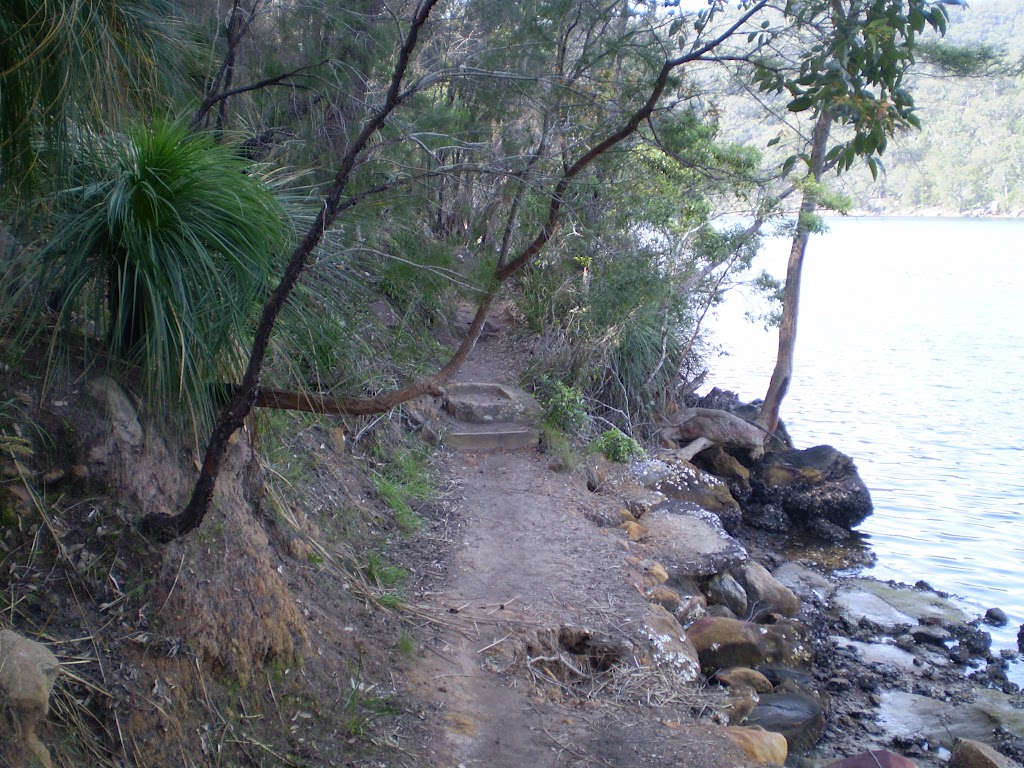 Track between Apple Tree Bay and the Int of the Berowra and Mt Ku-Ring-Gai Tracks