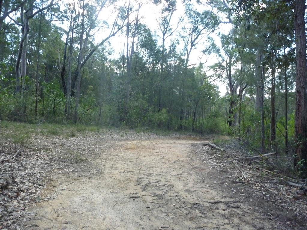 Perimeter Trail near Terrey Hills (306896)