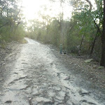 Perimeter Trail near Terrey Hills (307691)