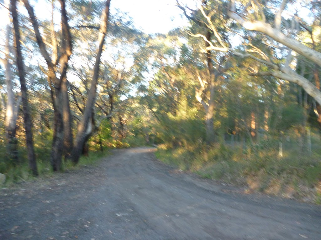 Cullamine Rd and Perimeter Trail, near Terrey Hills
