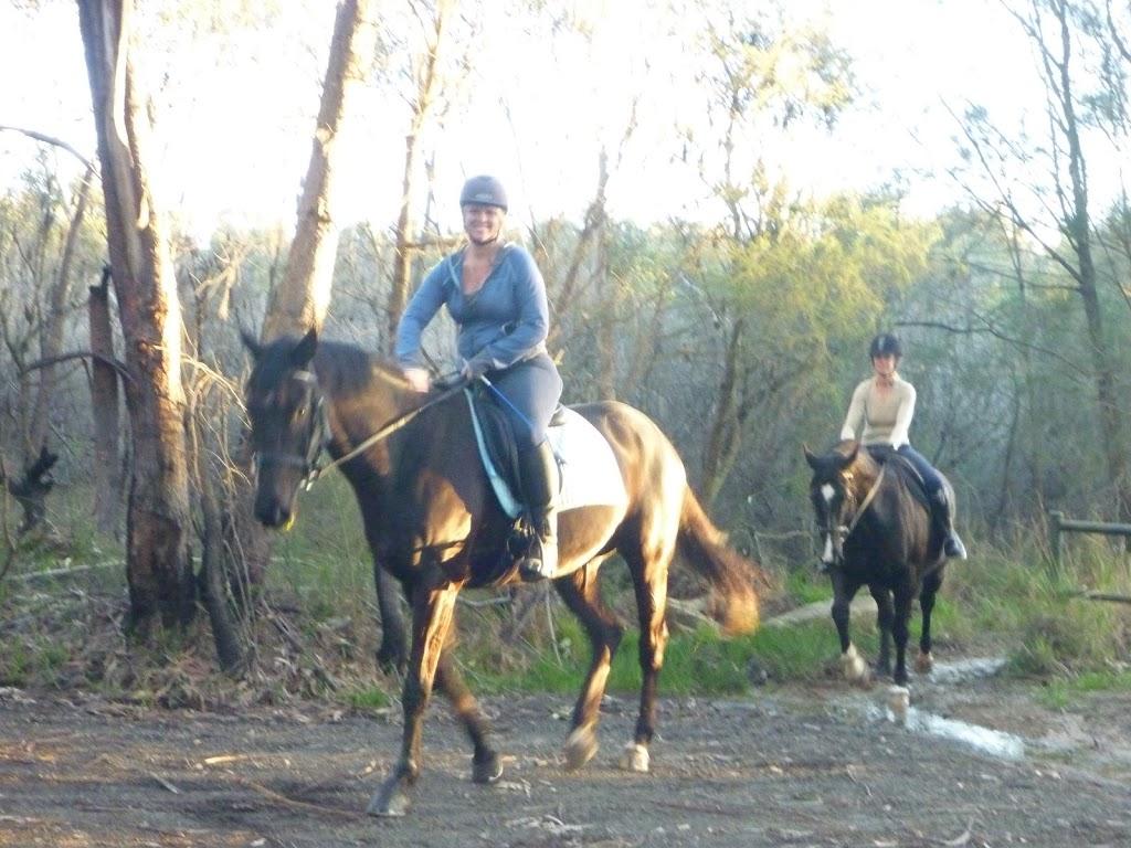 Horse riding on Cullamine Rd, near Terrey Hills