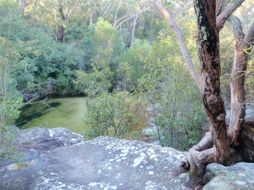 First Glimpse of Lovetts Pools