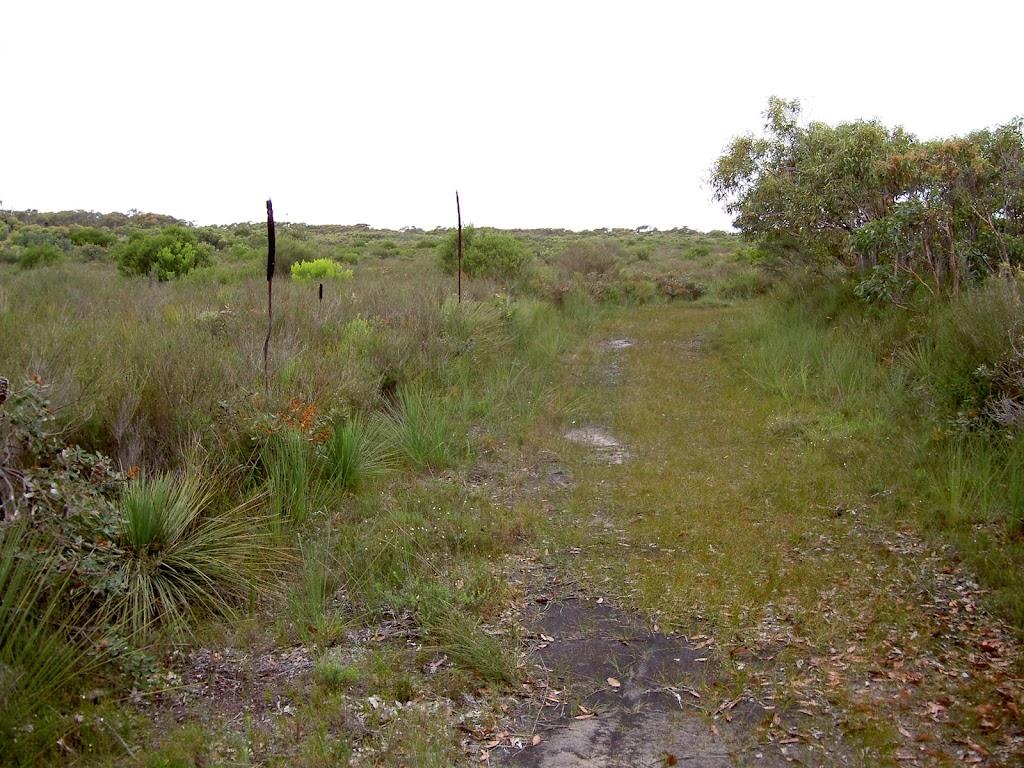 Grassed Service track