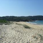 Congwong Beach near La Perouse (308636)