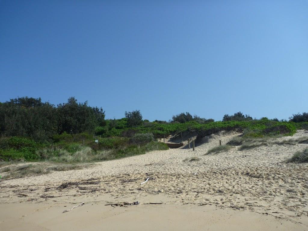 Congwong Beach La Perouse (308648)