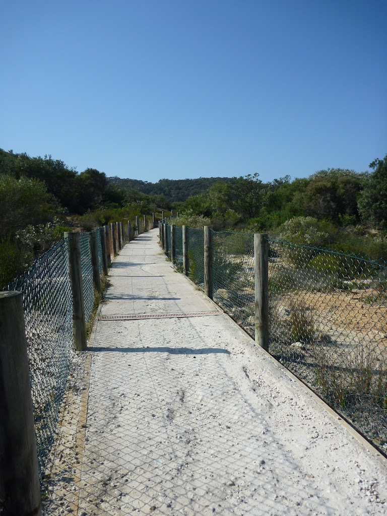 Concrete track to Little Congwong beach, near La Perouse