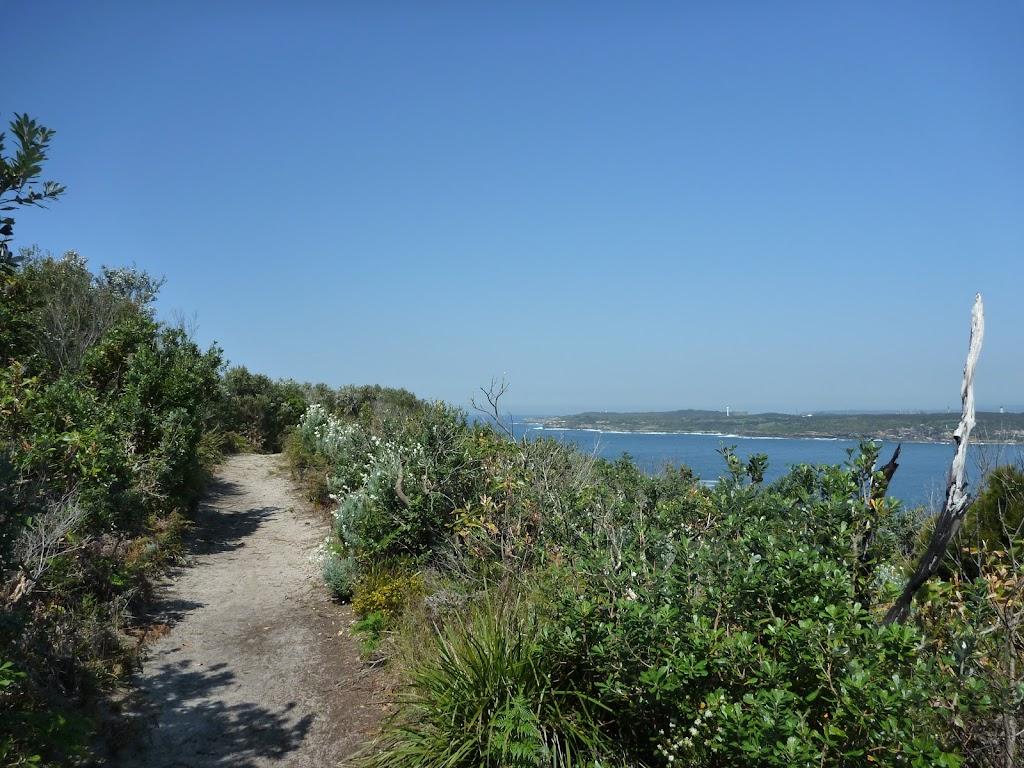 Henry Head Track near La Perouse (309410)