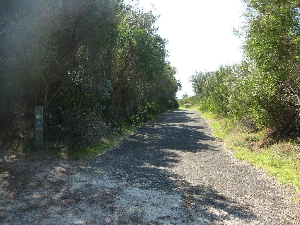 management trail near henry head