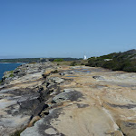 Track at Henry Head near La Perouse (309806)